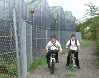 Students Cycling  by Greenhouses